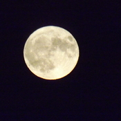 full hunters moon