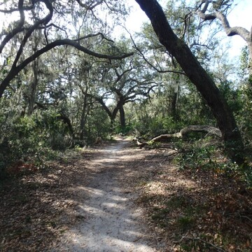 Boyd Hill Nature Preserve, Country Club Way South, St. Petersburg, FL, USA