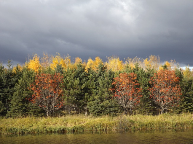 AUTUMN BURST Unnamed Road, Thunder Bay, ON P7E 6T7, Canada