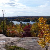 Falling in Love with Bracebridge