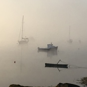 Fog in Prospect Bay