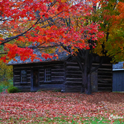 McLeod Log House circa 1840
