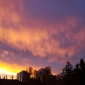 Chinook Sunrise