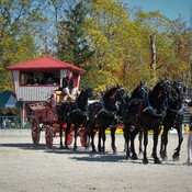 Rockton World's Fair - Rockton Ontario