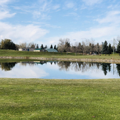 Reflections at the golf course!