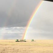 Harvest 2019's Pot of Gold
