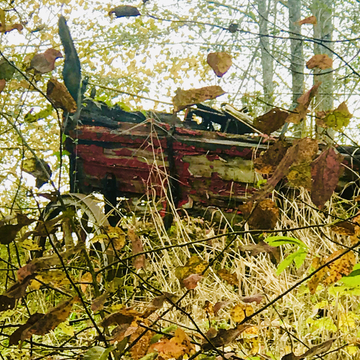 Old wagon - Fall picture