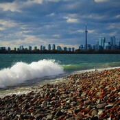 City View from Tommy Thompson Park