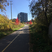 Iron Horse Trail Kitchener, ON