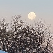 Full Moon in the Morning