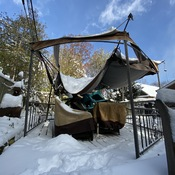 Broken gazebo after record breaking snow in Nov.