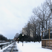 Early morning by the Rideau Canal.