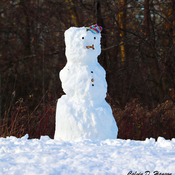 Large Snowman in Long Sault