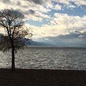 Lake Okanagan from Gyro Park West Kelowna - Nov 17