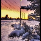 Lovely Snowy Sunrise