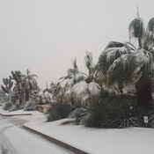 Neige a Yucca valley en Californie