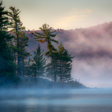 Misty morning on the lake