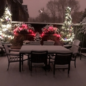 Back deck in Etobicoke