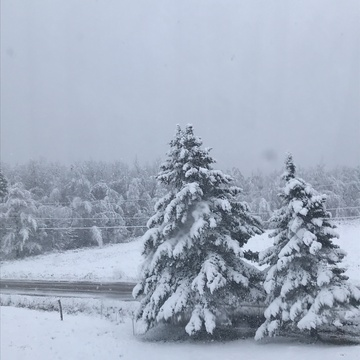 First snow of 2019 in Saint-Paul-de-Kent, NB