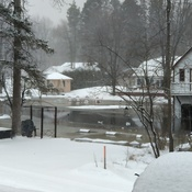 Sturgeon River Flooding