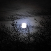 Cold December Moon