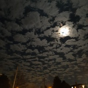 night sky in guelph