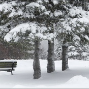 Two benches, Elliot Lake.