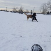Outdoors in Calgary