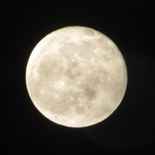 The last full moon of the decade. La última luna llena de 2019.
