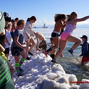Port Dover Polar Bear Dip