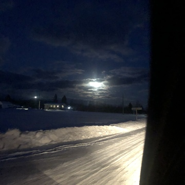 Wolf Moon in northeastern ontario