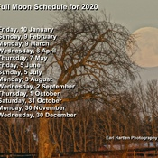 Full Moon Schedule 2020