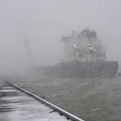 Snow Squall in the Harbour