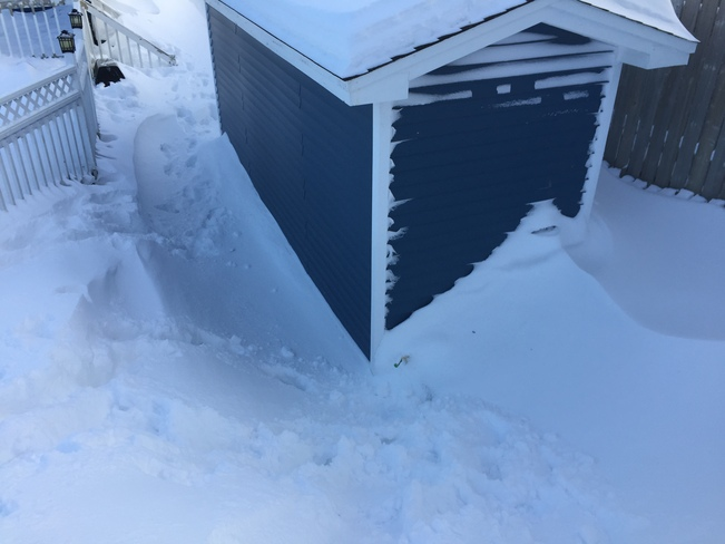 The Amount of snow is crazy! St. John's, NL