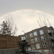 Rainbow in January
