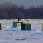 Ice Fishing at Hoople Creek