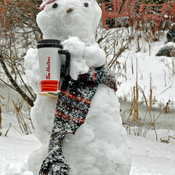 Snowman gets a Timmies.