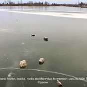 Big rocks on thin ice, melt, rain, water and Swan and snow