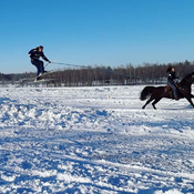Gallant Farm Extreme Skijoring 2020
