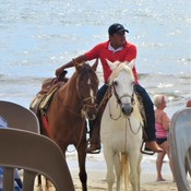 Horse Rides on the Beach