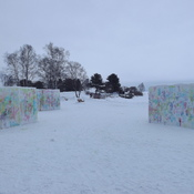 PAINTED SNOW CUBES