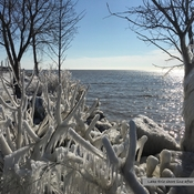 Lake Erie Ice Formations On Family Day after a Windy Day