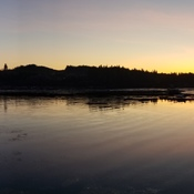 port hardy morning