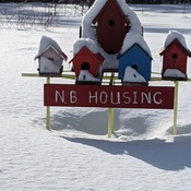 New Brunswick Housing Closed!