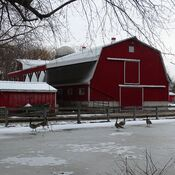The animal farm in Canatara Park Sarnia