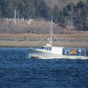 Lobster Boat heading home!