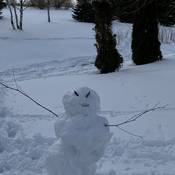Snowman at Hunterlane Stables!