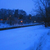 Snow On The Rideau Canal