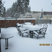 almost 12 inches of snow fell in Alliston ON in 24 hours