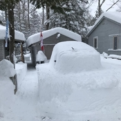 Digging out from last night's heavy snow.
